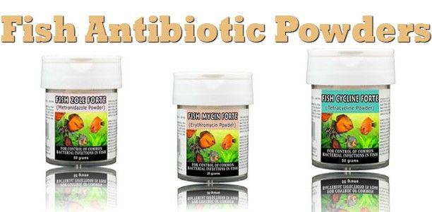Fish Antibiotic Powders – Erythromycin, Tetracycline, Metronidazole, Fenbendazole