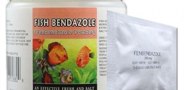Fish Bendazole Forte – Fenbendazole (Panacur C)
